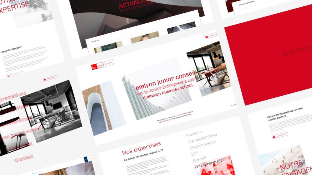 Version desktop du site web de l'em lyon junior consel